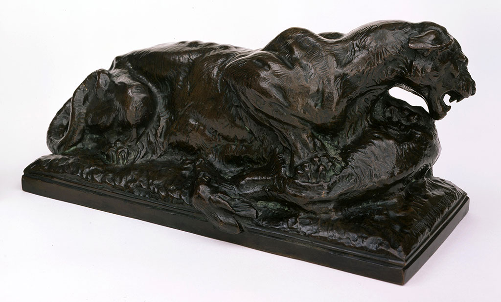 """The strength and power of the lion is captured in bronze. Alexander Phimister Proctor (1860-1950). """"Panther with Kill,"""" modeled 1907, cast initially 1908. Bronze, 11.5 x 15.5 x 5 inches. Gift of A. Phimister Proctor Museum with special thanks to Sandy and Sally Church 4.08.14"""