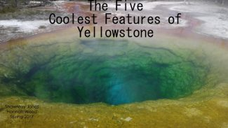 The Five Coolest Features of Yellowstone