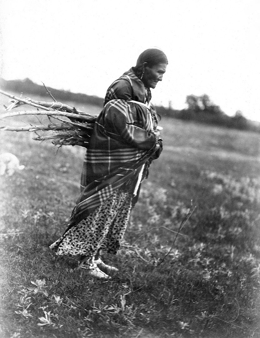 Tsistsistas (Cheyenne) woman gathering wood, 1902. MS 37 Elizabeth C. Grinnell Collection. P.37.1.13