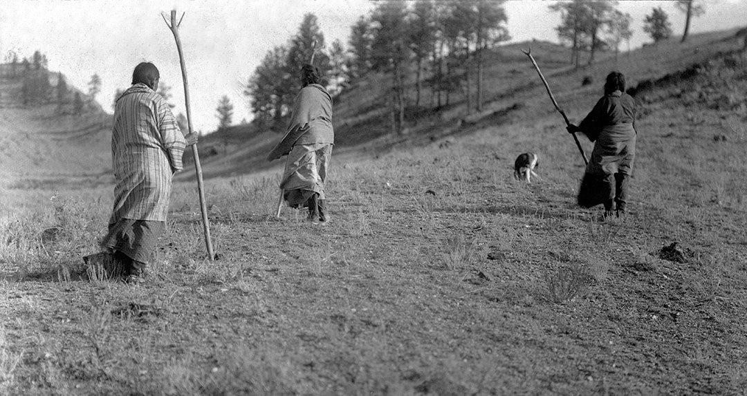Northern Cheyenne women setting out to gather roots, ca. 1902-1911. MS 37 Elizabeth C. Grinnell Photograph Collection. P.37.2.3