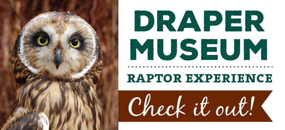 Draper Museum Raptor Experience