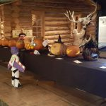 Fall brings changes to Buffalo Bill Center of the West schedule and activities