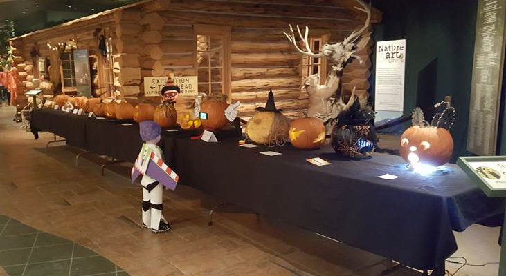 "A young ""Buzz Lightyear"" carefully considers his favorite in the pumpkin-carving contest at last year's Halloween Family Fun Day at the Center of the West."