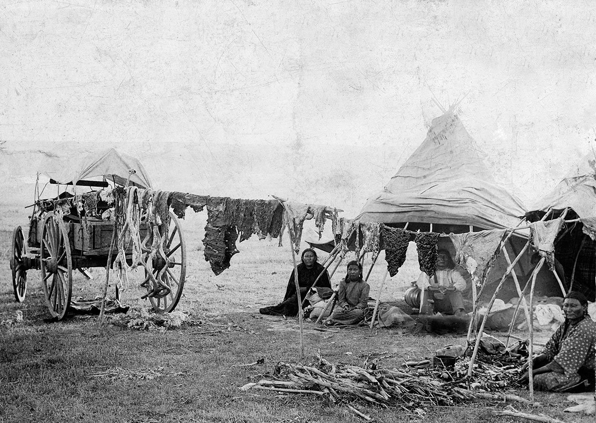 Sioux Indians drying meat while on a visit to the Crows, July 4, 1895. MS 35 North American Indian Photograph Collection. P.35.174