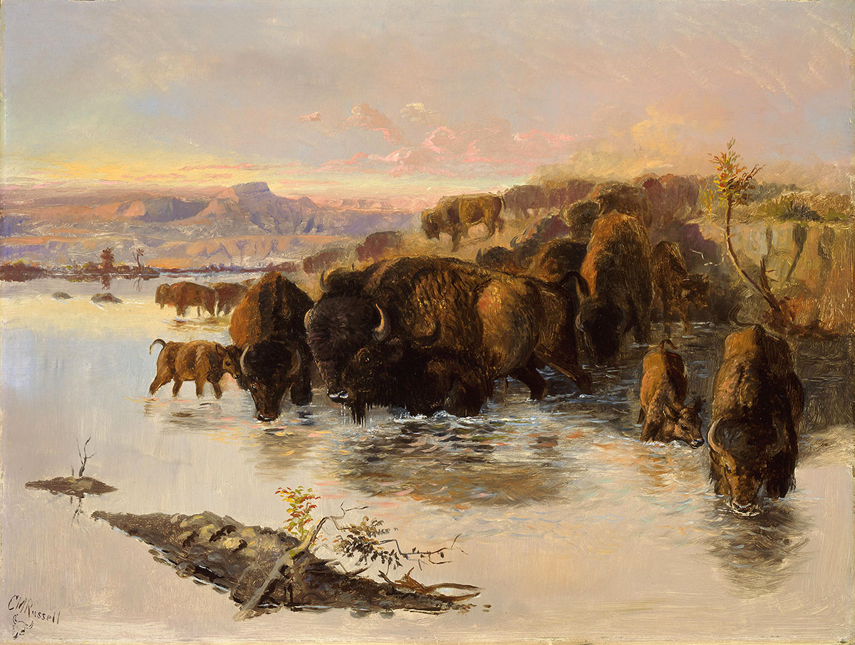 "Charles M. Russell (1864–1926). ""The Buffalo Herd,"" ca. 1890. Oil on board, 17.75 x 23.75 inches. Gift of William E. Weiss. 21.80"