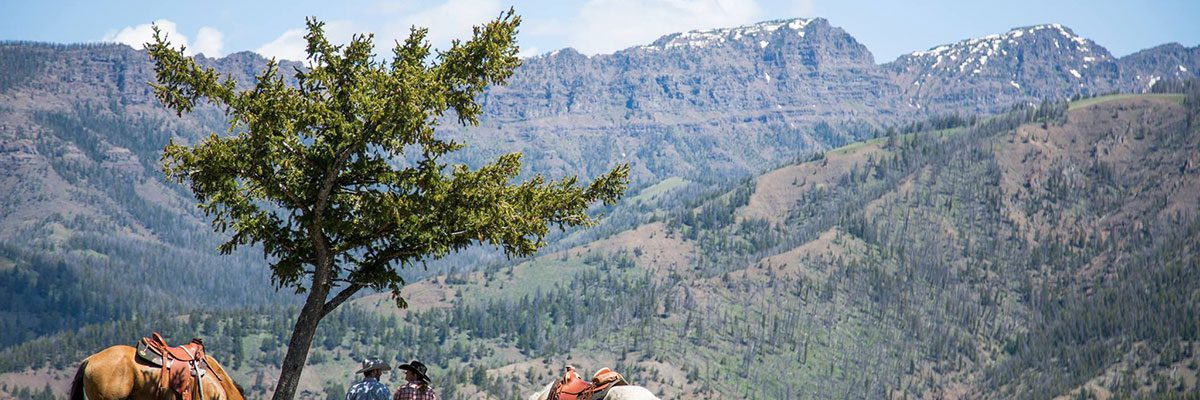 Horseback riders enjoy the view from Crossed Sabres Ranch.