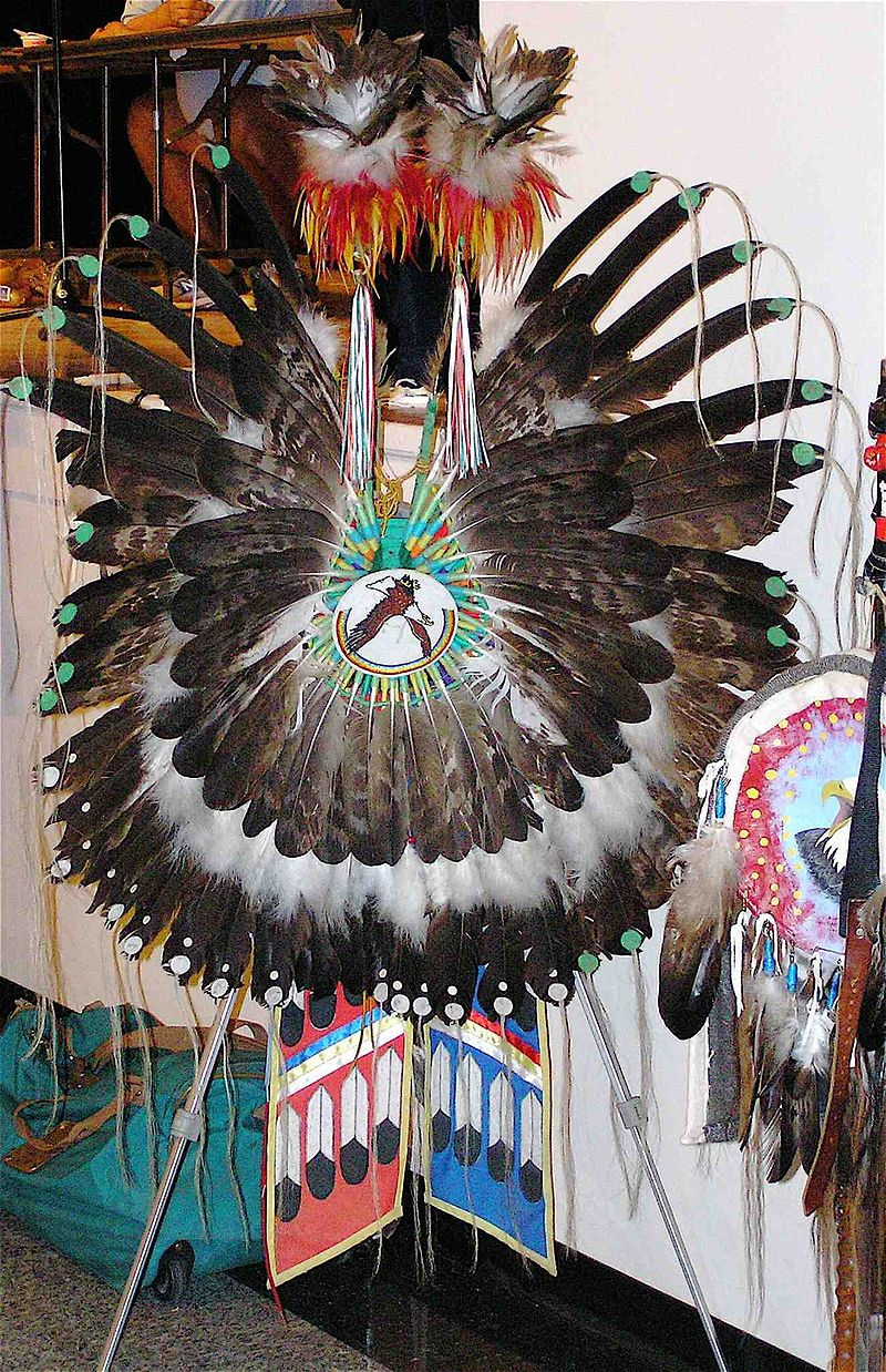 Eagle feathers are often used in Native American pow wow regalia.