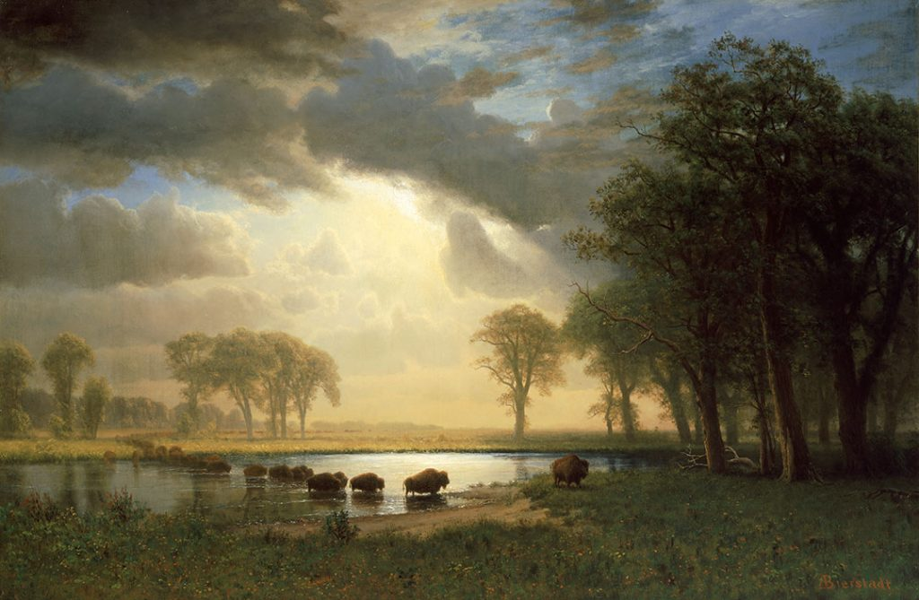 Albert Bierstadt (American, born Germany, 1830–1902). The Buffalo Trail, ca. 1867. Oil on canvas, 31.875 x 48 inches. Museum of Fine Arts, Boston, Boston, MA, USA. Gift of Martha C. Karolik for the M. and M. Karolik Collection of American Paintings, 1815–1865. 47.1268