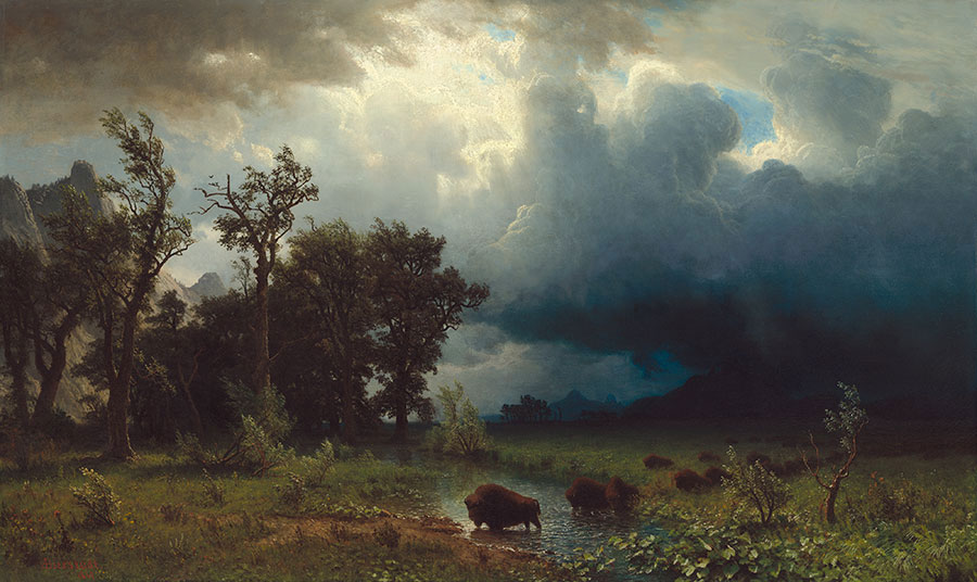 """Fig. 6, """"Buffalo Trail: The Impending Storm,"""" 1869. Oil on canvas. Corcoran Collection Museum Purchase, through the gift of Mr. and Mrs. Lansdell K. Christie. National Gallery of Art, Washington, DC. 2014.79.3"""