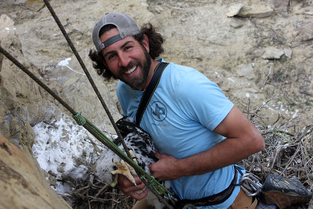 Team member and photographer Nick Ciaravella rappels down to an eagle nest. C.R. Preston photo.