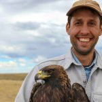 Free Draper Natural History Museum lunchtime lecture explores golden eagle conservation in the Wyoming Basin Ecoregion