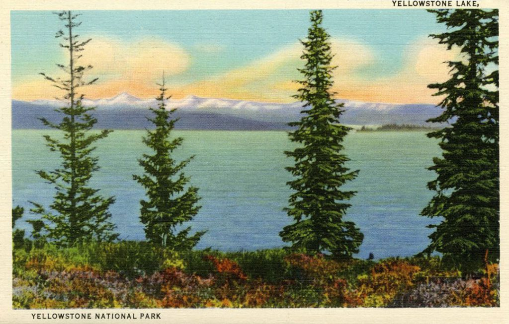 Postcard of Yellowstone Lake in Yellowstone National Park