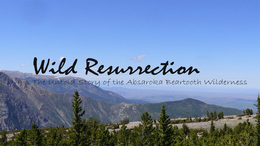 Wild Resurrection documentary cover