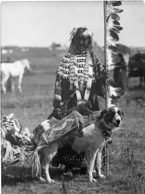 Native woman with dog equipped with travois. MS 35 North American Indian Photograph Collection, McCracken Research Library. P.35.191