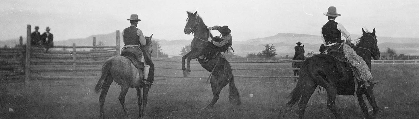 Arthur Holman bronc riding at Stampede Rodeo, Clarence William at left, Blocker Dodge at right. MS 005 Cody Local History Collection. P.69.1703