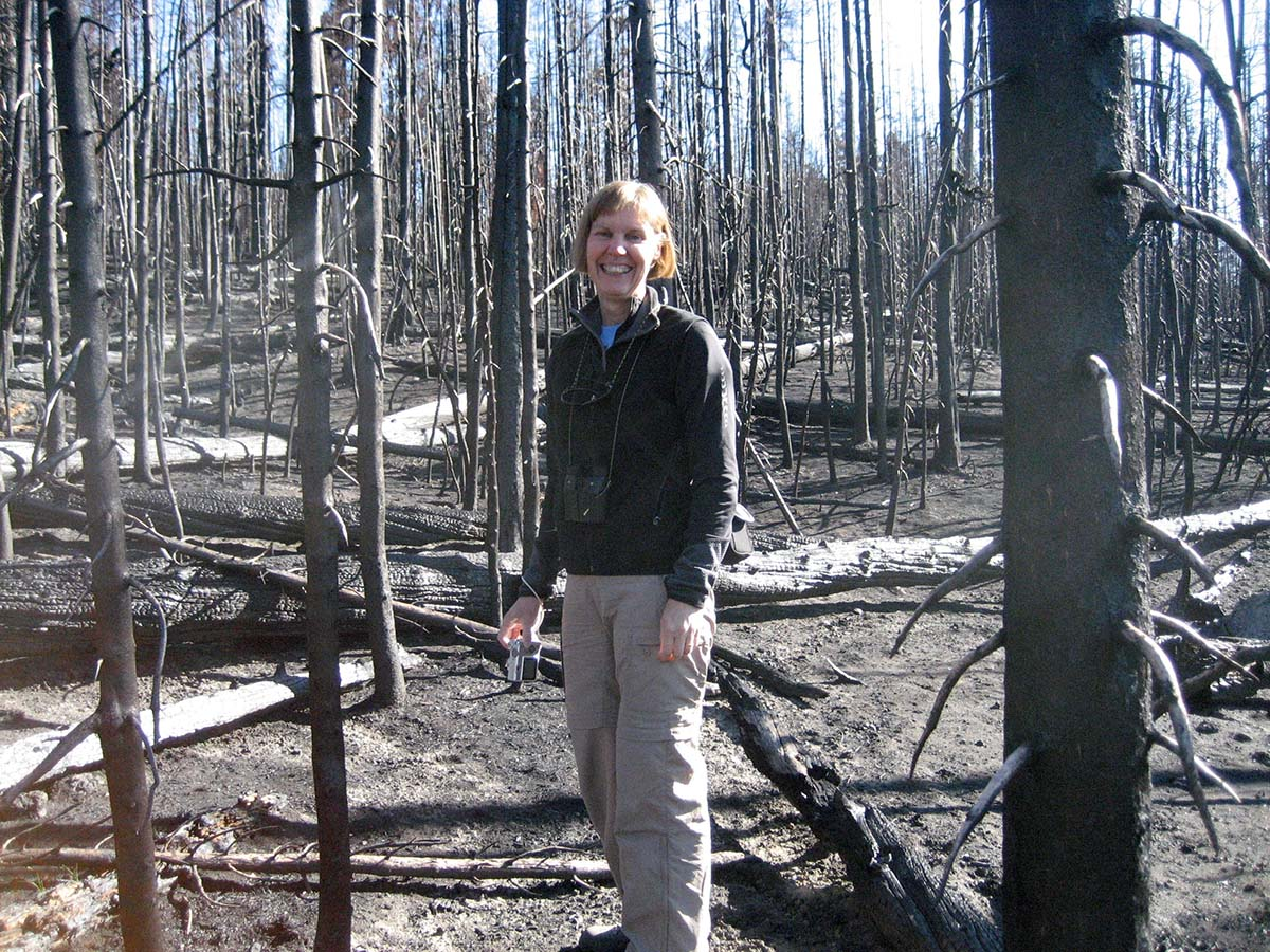 Dr. Monica G. Turner, winner of this year's Camp Monaco Prize, working in the field in Yellowstone National Park.