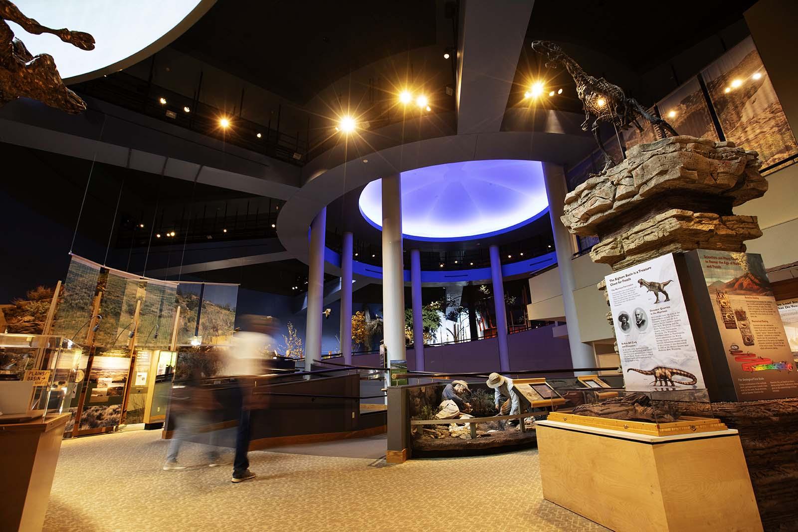 Draper Natural History Museum