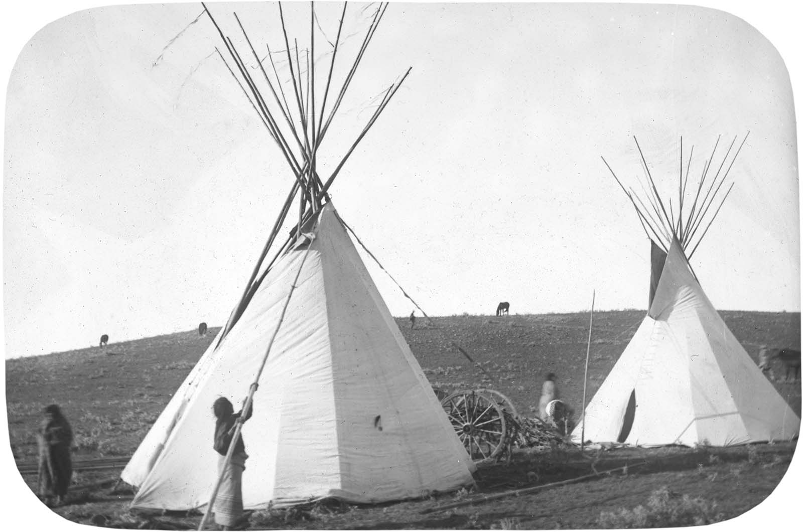 Crow women moving tipi flaps for ventilation, early 1900s. MS095 Petzoldt Collection, McCracken Research Library. LS.95.22