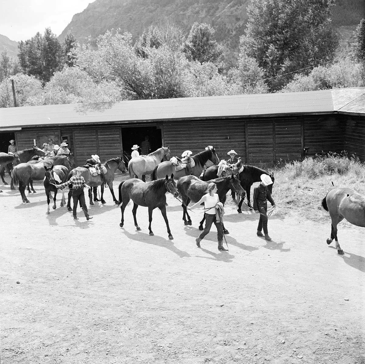 Guests with horses at Valley Ranch, with Absaroka Mountains in background. MS 89 Jack Richard Photograph Collection. P.89.37.8200.18-N