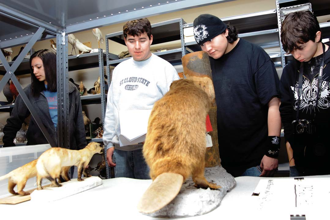 Students from the St. Labre Indian School inspect mounted specimens in the Draper Natural History Museum vaults.