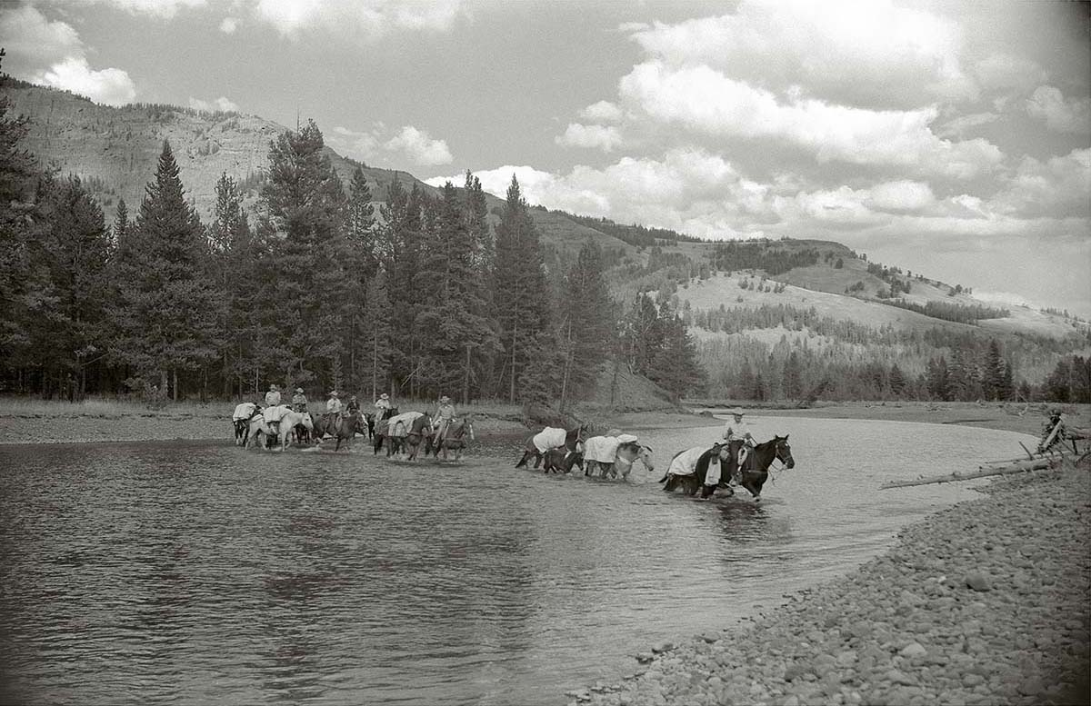 Pack string led by outfitter Les Bowman crossing the Thorofare Creek in 1953. Jack Richard photograph. MS 89 Jack Richard Photograph Collection, McCracken Research Library. PN.89.20005.12