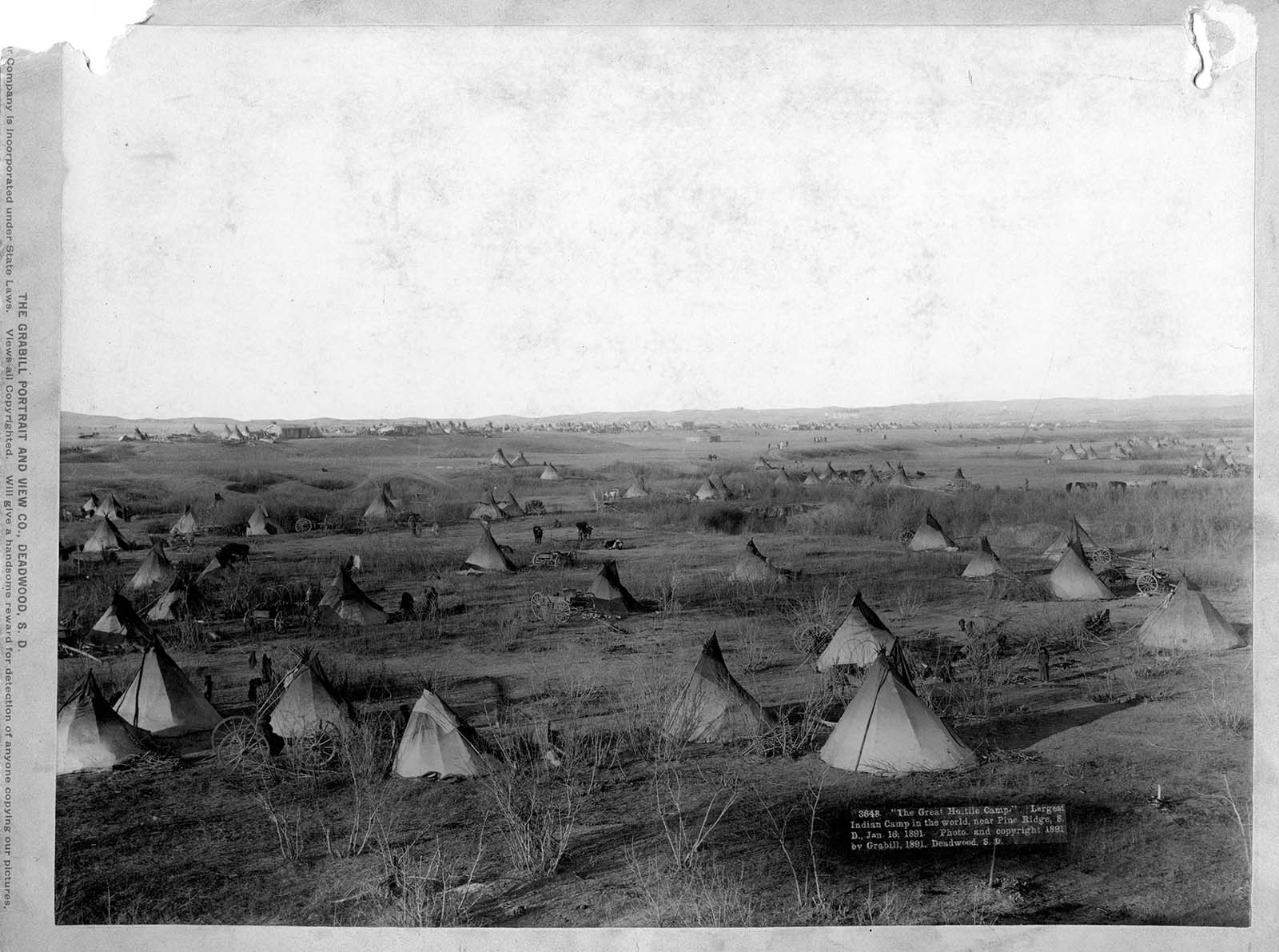 Camp near Pine Ridge, 1891. MS 35 North American Indian Photograph CollectionP.35.00