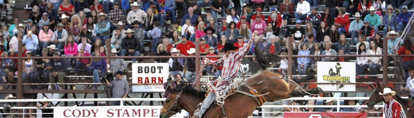 Sterling Crawley of Stephenville, Texas, competing in saddle bronc during the Cody Stampede Rodeo, July 1, 2016. Raymond Hillegas photo courtesy the Cody Enterprise.