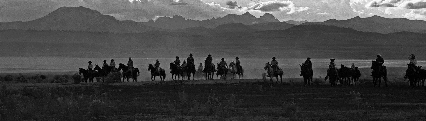 William Shepley photo. Owens Valley Horse Drive, California 1991; silver gelatin print. P.602.016 (detail)