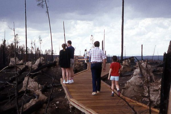 Visitors inspect Yellowstone fire damage at a massive blowdown on the road between Madison and Canyon Junctions. For some, the Park was destroyed; for others it was rebuilding. National Park Service photo by Jim Peaco, September 1988. (detail)