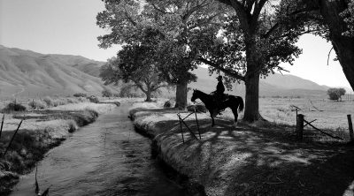 Rene Duykaerts, near Laws, Owens Valley, California, 1995. Silver gelatin print by William Shepley. P.602.014 (detail)