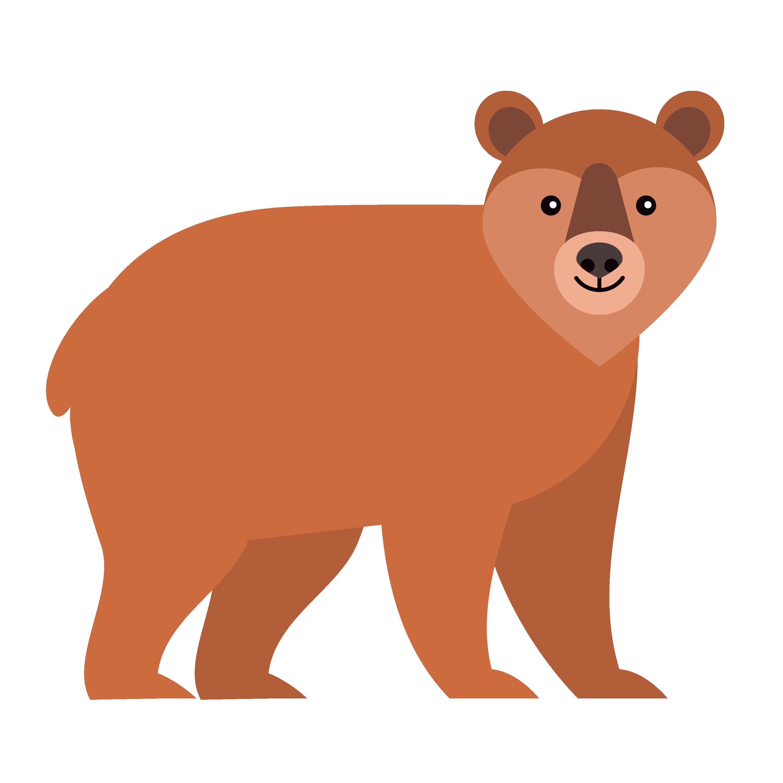 360 Adventure Bear