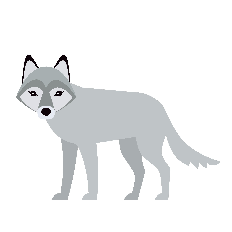 360 Adventure Wolf