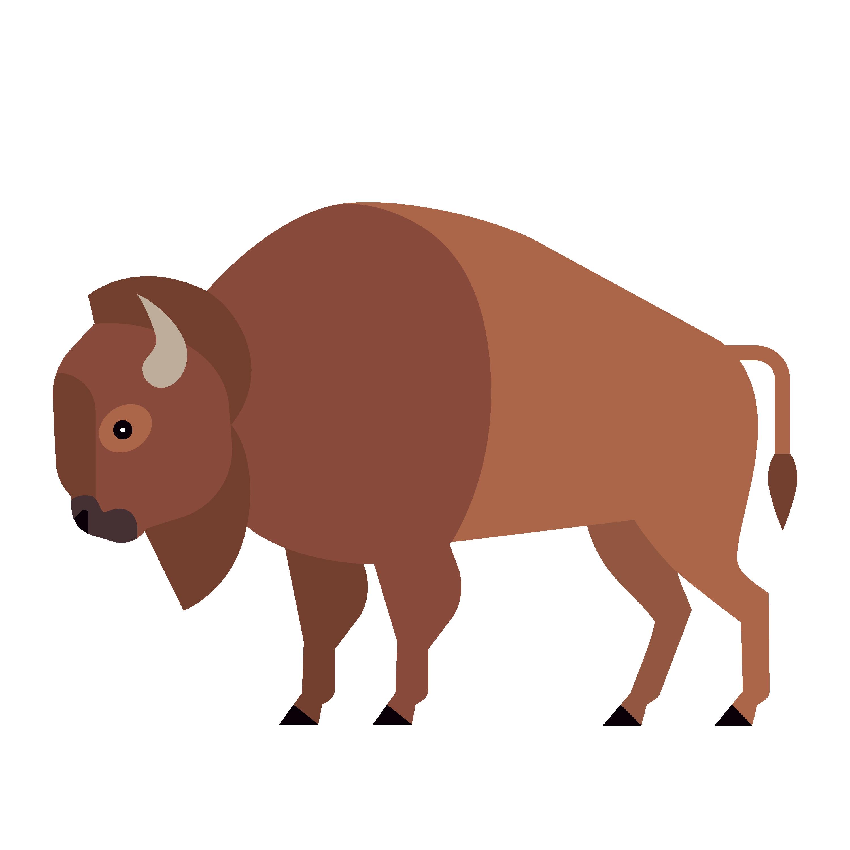 360 Adventure Bison