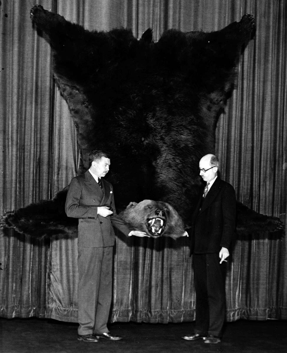 """McCracken with the """"big bear"""" on the stage of the Criterion Theatre, New York, December 1931-January 1932. MS 305 Harold McCracken Photograph Collection, McCracken Research Library. N384#noneV"""