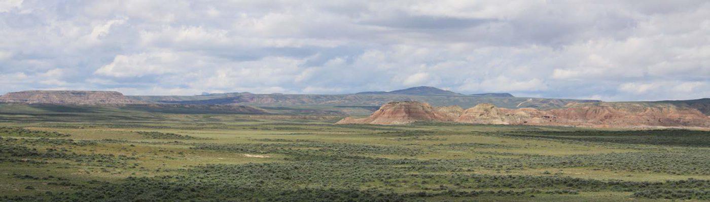 Sagebrush steppe landscape