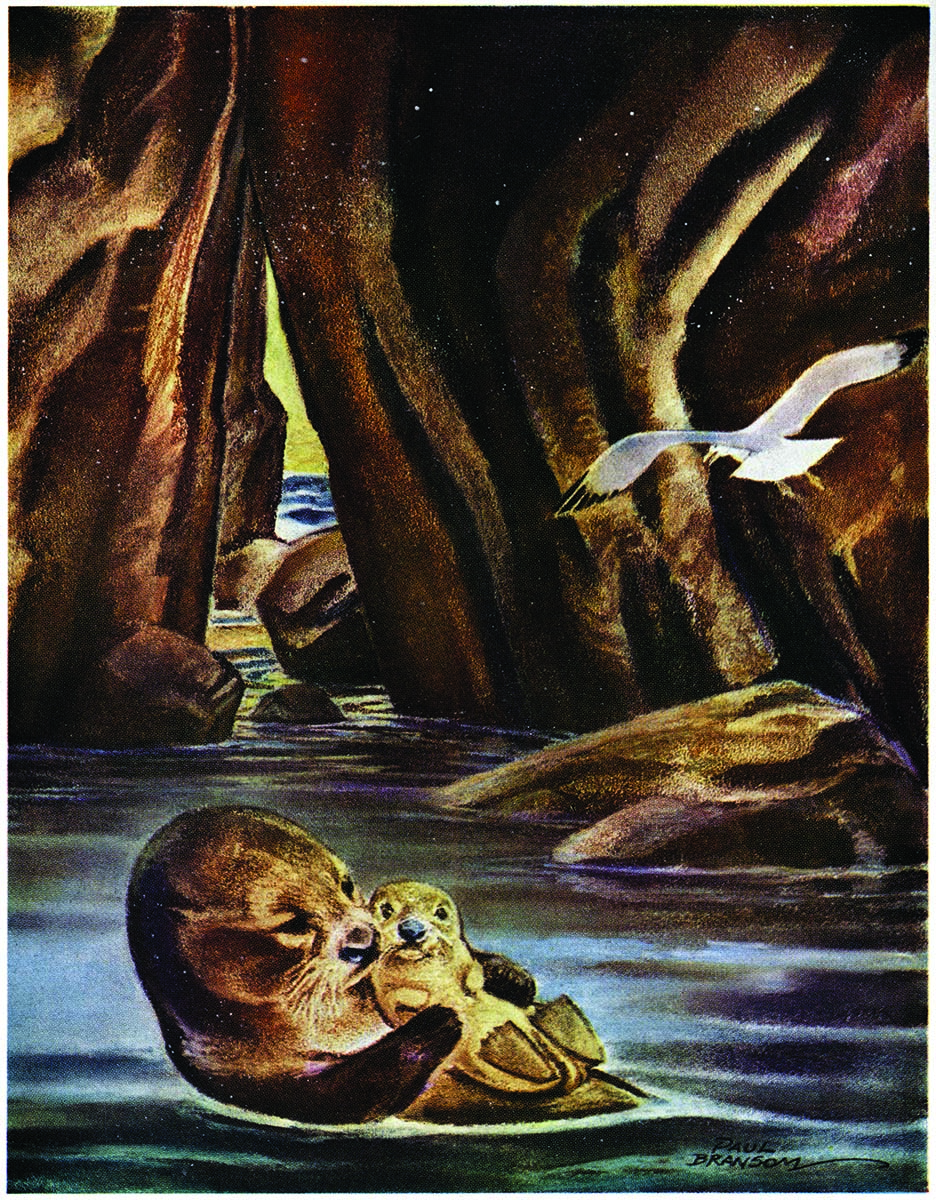 """From """"The Last of the Sea Otters."""""""