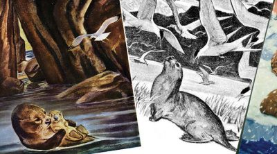 Harold McCracken collage