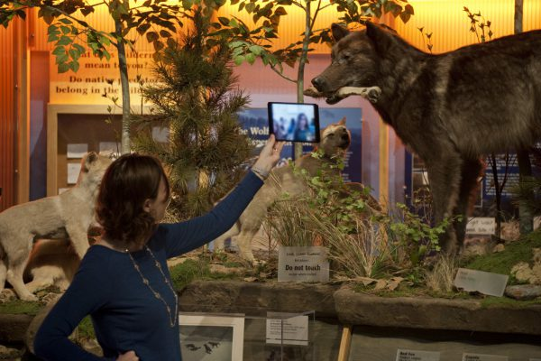 Megan in the Draper Natural History Museum during a Skype in the classroom lesson on Animal Adaptations.