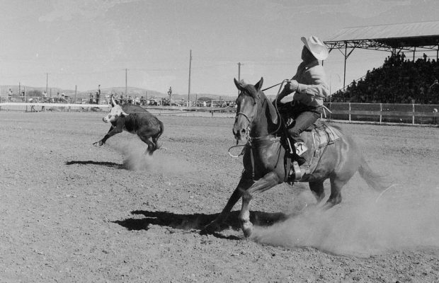 Stampede Rodeo, July 4, 1957.